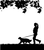 13078766-girl-walking-a-dog-in-park-in-spring-silhouette-layered-one-in-the-series-of-similar-images